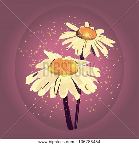 Vector chamomile illustration. Hand drawn chamomile. Chamomile branch, Chamomile sketch. Chamomile with artistic abstract effect. Vector illustration.