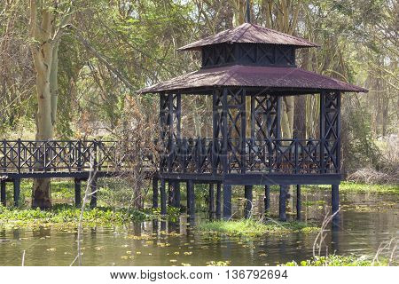 Wooden porch at the shore of Lake Naivasha Kenya