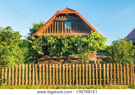 Idyllic old traditional wooden house with bird home and wine plant in Lonjsko polje, Croatia