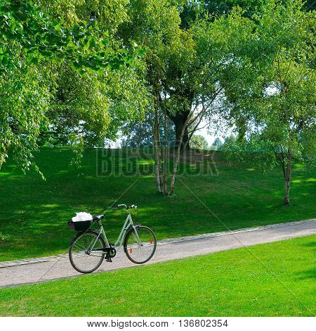 A Summer park, bike and bicycle path