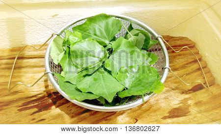 Gourd Fresh Vegetables in Stainless steel sieve on teak wood around are yellow color soft tone.
