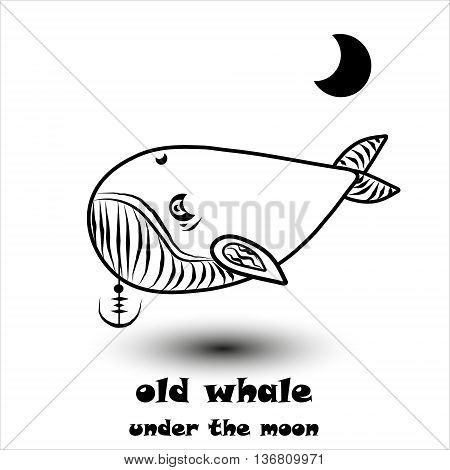 old whale under the moon old whale under the moon pattern on a white background with anchor