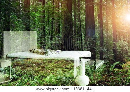 double exposure of bedroom and forest with sunbeam