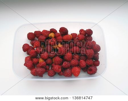 Red raspberries. Berry crops. red berries. Perennial shrub up to 2 m.
