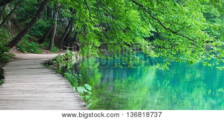 Lake coast in national Croatian nature park Plitvice Lakes with tree branches, bench and wooden walkway