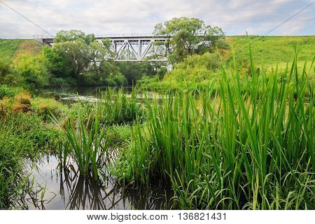 Railway bridge with locomotive and green grass at river foreground horizontal