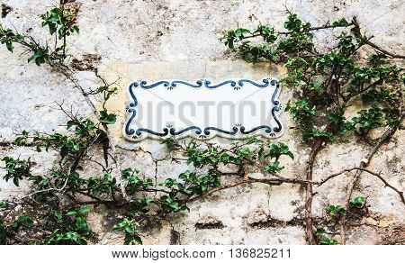 Traditional Maltese ceramic tile placed on the stone wall entwined with climbing bush plant city of Mdina Malta. Place your text