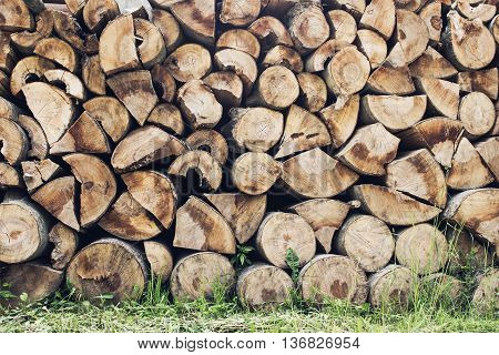 Dry chopped wood logs background with grass on the ground. Wood industry.