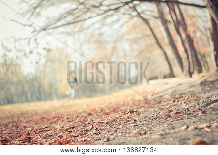 Blurred soft colors fall landscape background with fallen autumn leaves and blurred man walking far away in the park. Seasonal natural scene. Instagram filter effect used