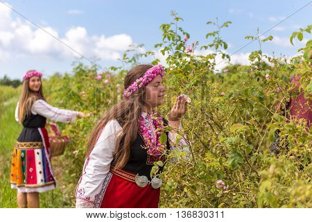Bulgarian girls dressed in traditional dress picking roses during the Annual Rose Festival in Kazanlak Bulgaria