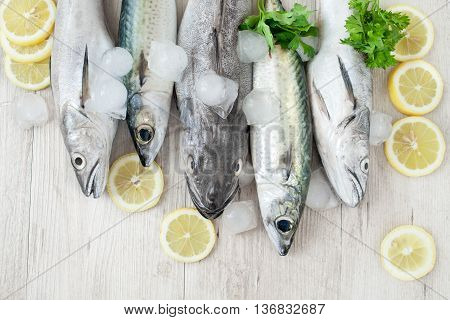 Mixed Fish
