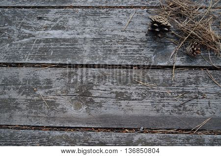 pine cone and dry pine needles lying on the boards