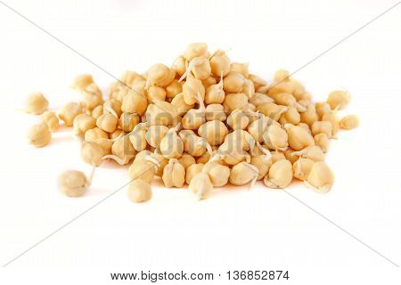 grains of germinated chickpeas on a white background