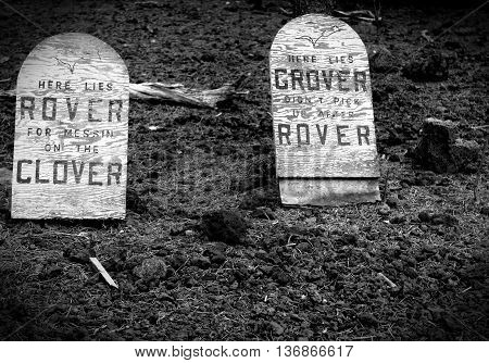 Rover goes down and takes poor old Grover with him.