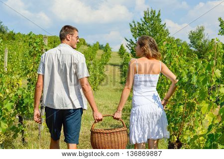 Happy Couple Grape Picking And Holding Wicker Basket