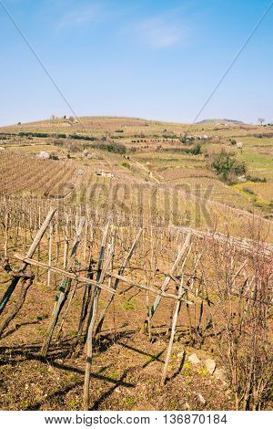 Vineyards and farmland on the hills in spring Italy.