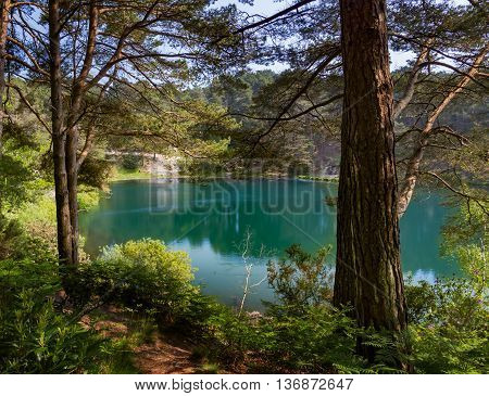 A former clay pit filled with blue-green water amongst pine trees