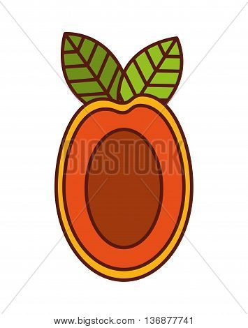 delicious mango fruit  isolated icon design, vector illustration  graphic