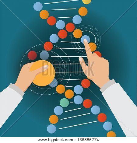 Hands of scientis fix the DNA molecule.
