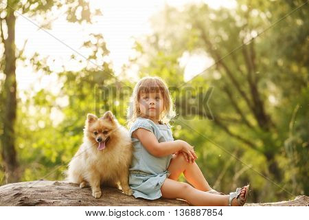 Little girl sits next to a pet. The girl and a dog sitting on a fallen tree. Pedigree dogs Spitz. Funny animals.