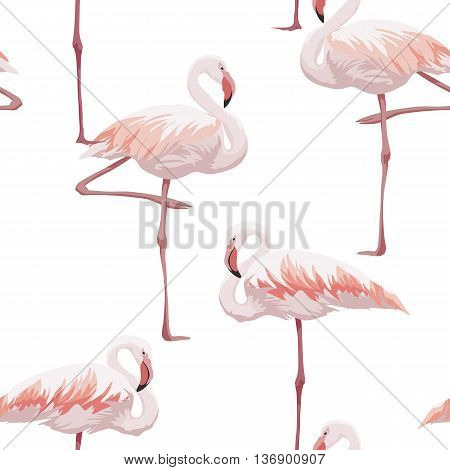 Hand drawn pink flamingo seamless pattern, vector illustration