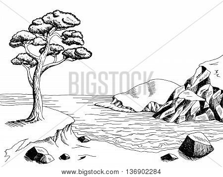 Sea coast graphic art pine black white landscape illustration vector
