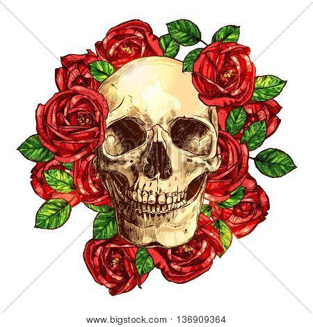 Skull With Red Roses Hand Drawn Illustration