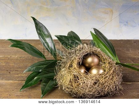 Three golden eggs in nest with branch and sky background close up