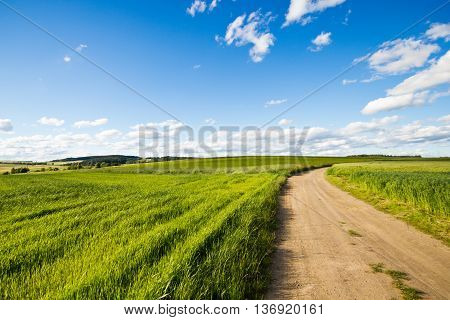Cycle track in a field on a sunny day. Landscape with a beautiful cloudy sky. The road into the field.