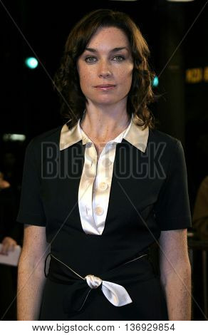 Julianne Nicholson at the Los Angeles premiere of 'Kinsey' held at the Mann Village Theater in Westwood, USA on November 8, 2004.