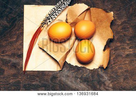 Tree Eggs On Paper