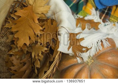 Yellow autumn leaves in a basket and pumpkin