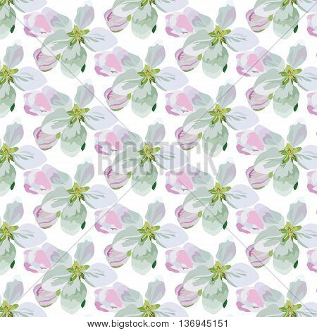 Vector Spring Floral pattern background. Flower bouquet vintage cover pattern. Flourish blossom flowers for fabrics textile card wedding invitation