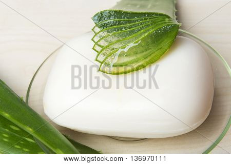 Green Aloe Vera leaf backround with soap