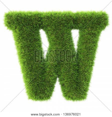 Alphabet made from green grass. isolated on white. 3D illustration. w