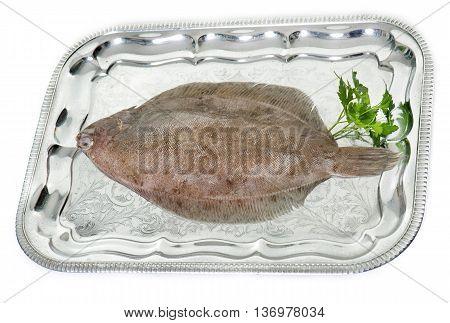 Lemon sole on a silver tray in studio