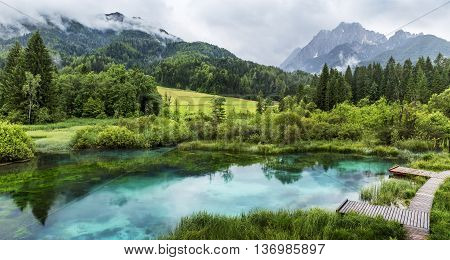 Zelenci pond near Kranjska Gora in Triglav National Park