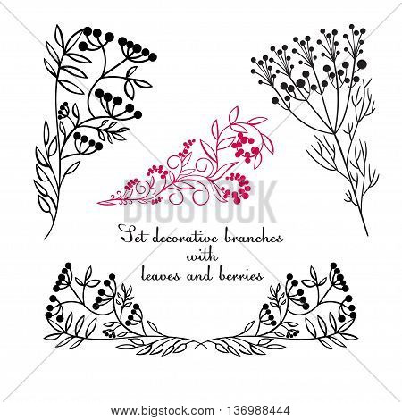Hand drawing decorative floral elements. Vector illustration. White and black