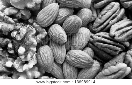 Black and white almonds, pecans, and walnuts arranged in stripes