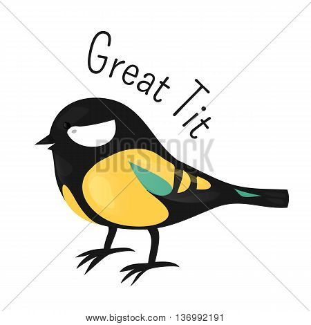 Great tit isolated on white. Tits, chickadees, and titmice constitute the Paridae, family of small passerine birds. Child fun pattern icon. Part of series of various species. Cartoon. Vector