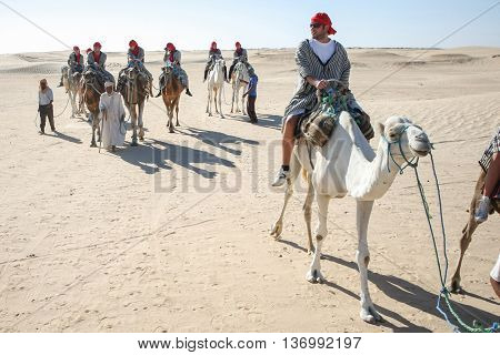 Tourists Tour On Camels