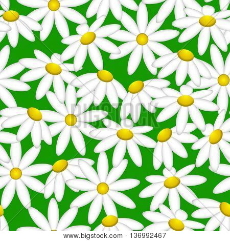 Camomile on a green background. Pattern seamless.Endless texture