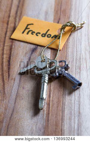 Secret Keys For A Free Life