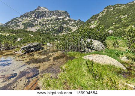 Summer view of Dzhangal peak and Banski lakes, Pirin Mountain, Bulgaria