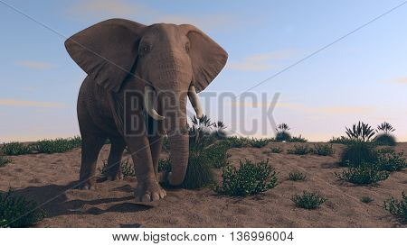 3d illustration of walking elephant