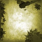image of treasure map  - autumn frame - JPG