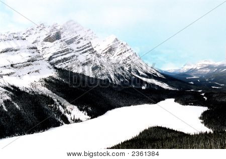Lake Peyto In Canadian Rockies Canada