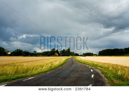 Small Winding Country Side Road After Rain