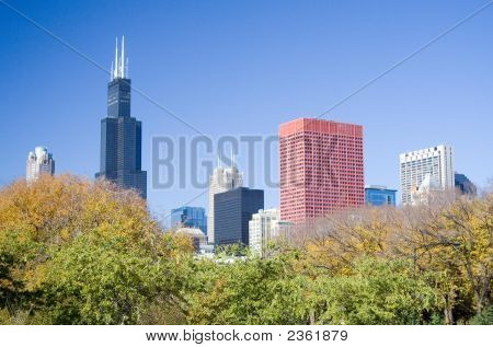 Chicago Skyline, Including Sears Tower