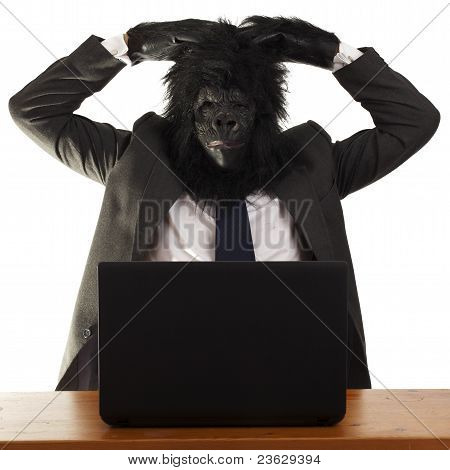 A very confused gorilla in the office.